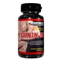 CARNITINE 500 MG 90 CAPS