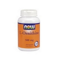L-ORNITHINE 500 MG  120  CAPS